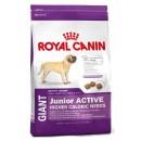 Royal Canin GIANT Junior Active (Сухой корм Роял Канин для крупных щенков с высоой энергетической активностью)