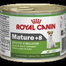 Royal Canin Mature +8. Роял Канин Для пожелых собак старше 8 лет.