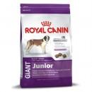Royal Canin GIANT Junior .Сухой корм Роял Канин для  щенков очень крупных порд