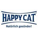 Happy Cat / Хеппи Кэт